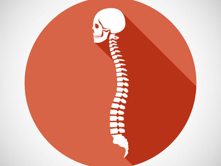 Do you know where your spine is?