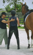 Pilates for Dressage in person