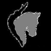 PFD-logo_200X200.png