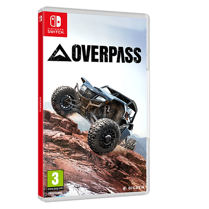 Overpass Nintendo
