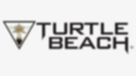 384-3843880_15-turtle-beach-png-for-free
