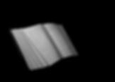 Screen Shot 2020-01-06 at 4.57.37 PM.png