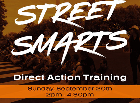 Street Smarts - Direct Action Training