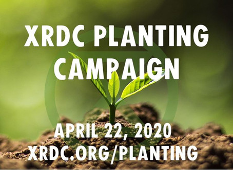 XRDC Planting Campaign