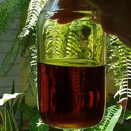 Only Oud Oil Blend