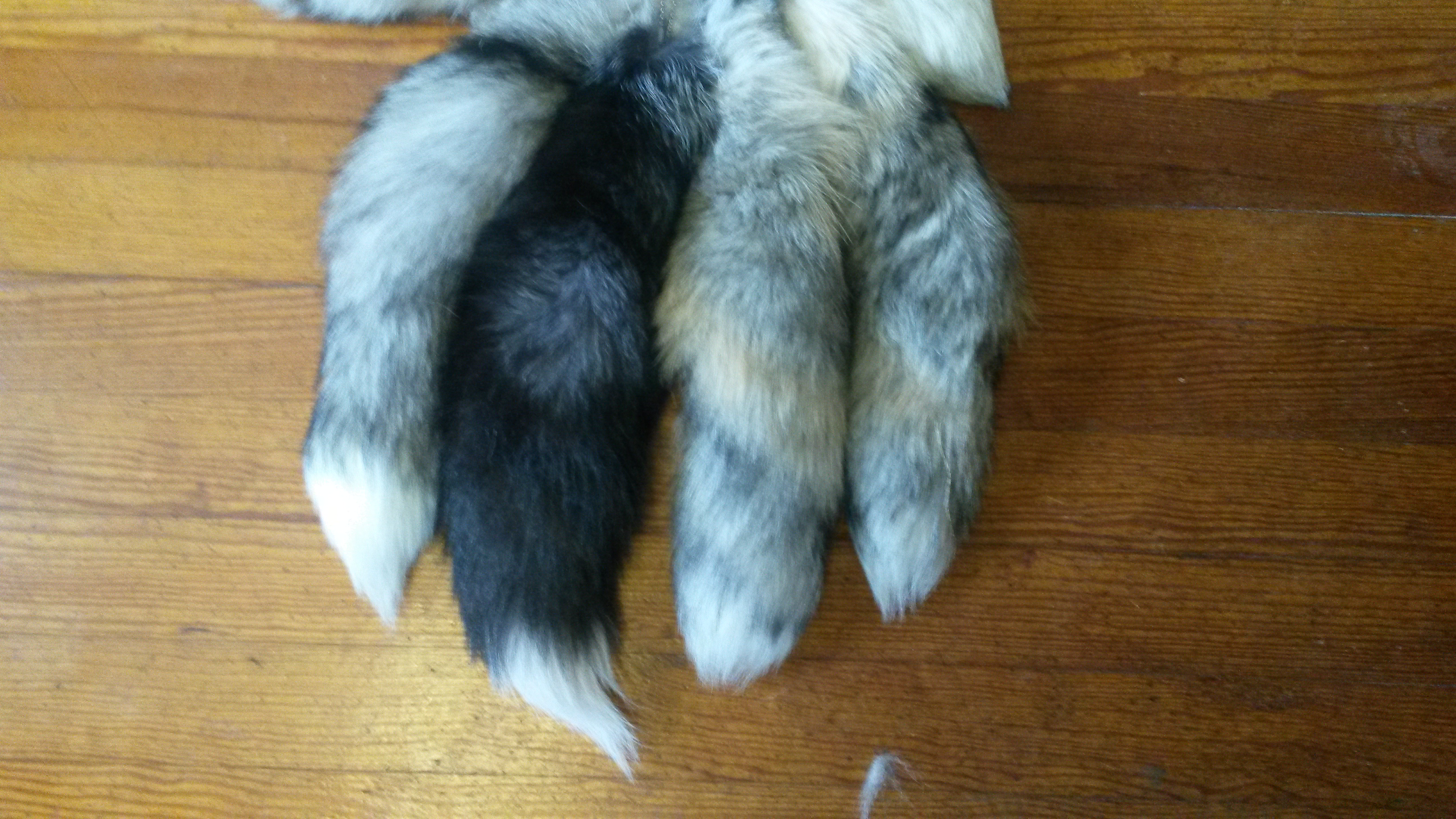 Natural Tails.jpg