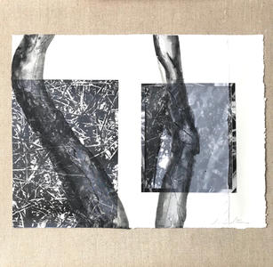 Susan Stair Cliche Verre Print Series