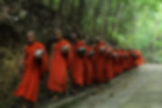 Canva - Monks Fall Inline on Sidewalk.jp