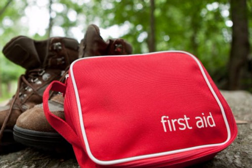 Basic Wilderness First Aid