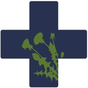 Intro to herbal first aid