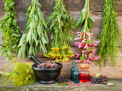 Bunches Of Healing Herbs On Wooden Wall, Mortar With Dried Plants And Bottles.jp