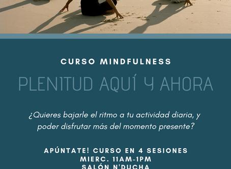 Plenitud Aquí y Ahora, Curso en Puebla