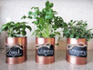 Turn your can goods into planters!