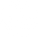 Root Thinking Logo.png