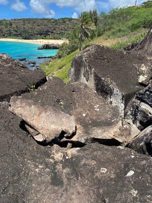 koʻa Heiau Hawaii