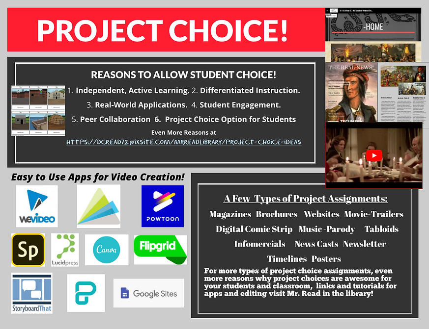 project choice infographic.PNG