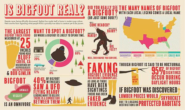 infographic 4.jpg