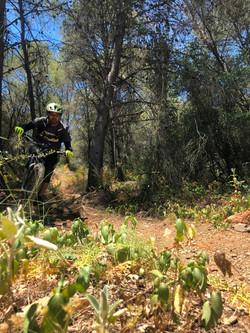 Sierra MTB Bike park 18063 (12)