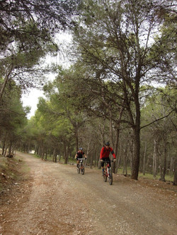 Alhaurin Village (1).JPG
