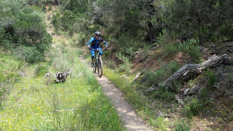 Sierra MTB - 2016-04-4 (11)