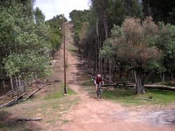 malaga (1).jpg