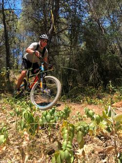 Sierra MTB Bike park 18063 (11)