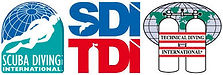 logo SDI TDI.jpg