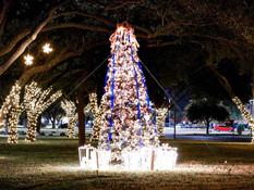 Christmas Tree Lighting Event: Virtual