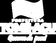 03 - Logotipo PMTA 2021.png