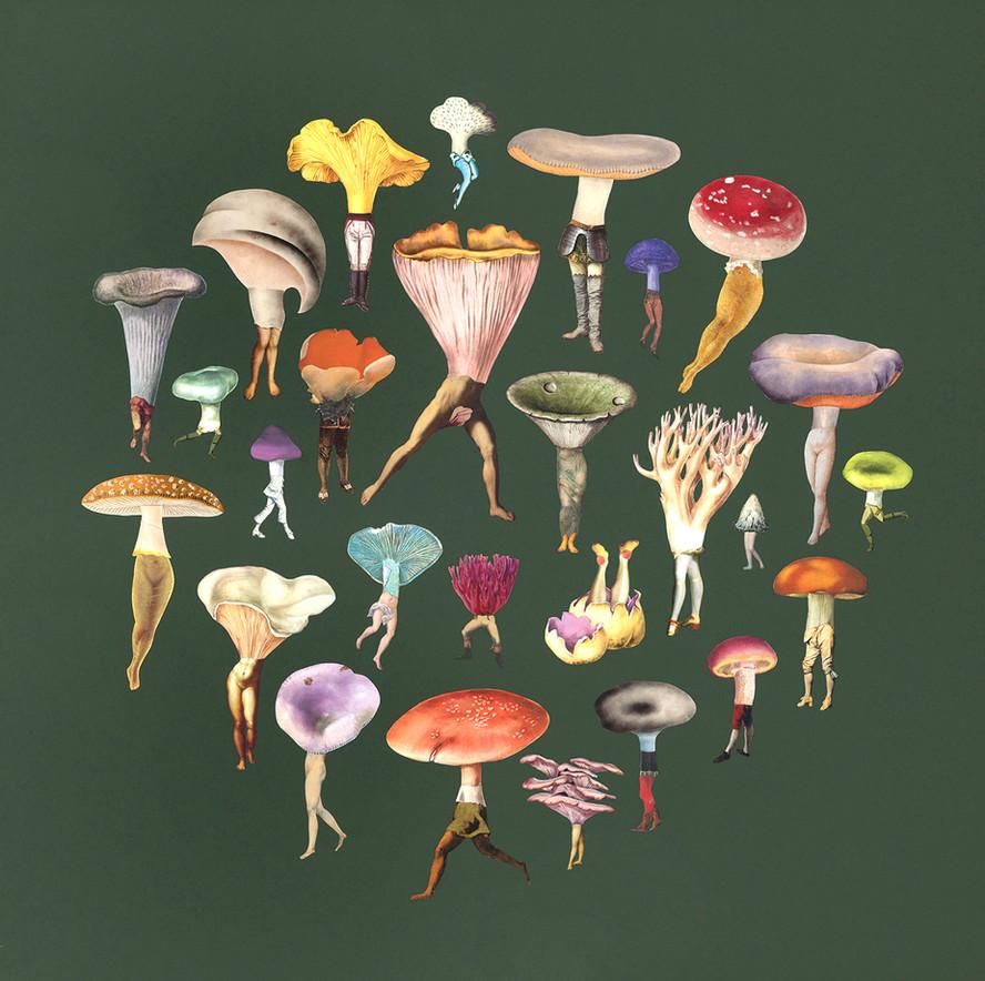 Mushroom Troop