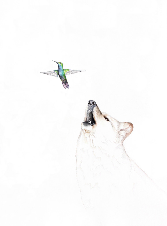 The Birth of Hummingbirds