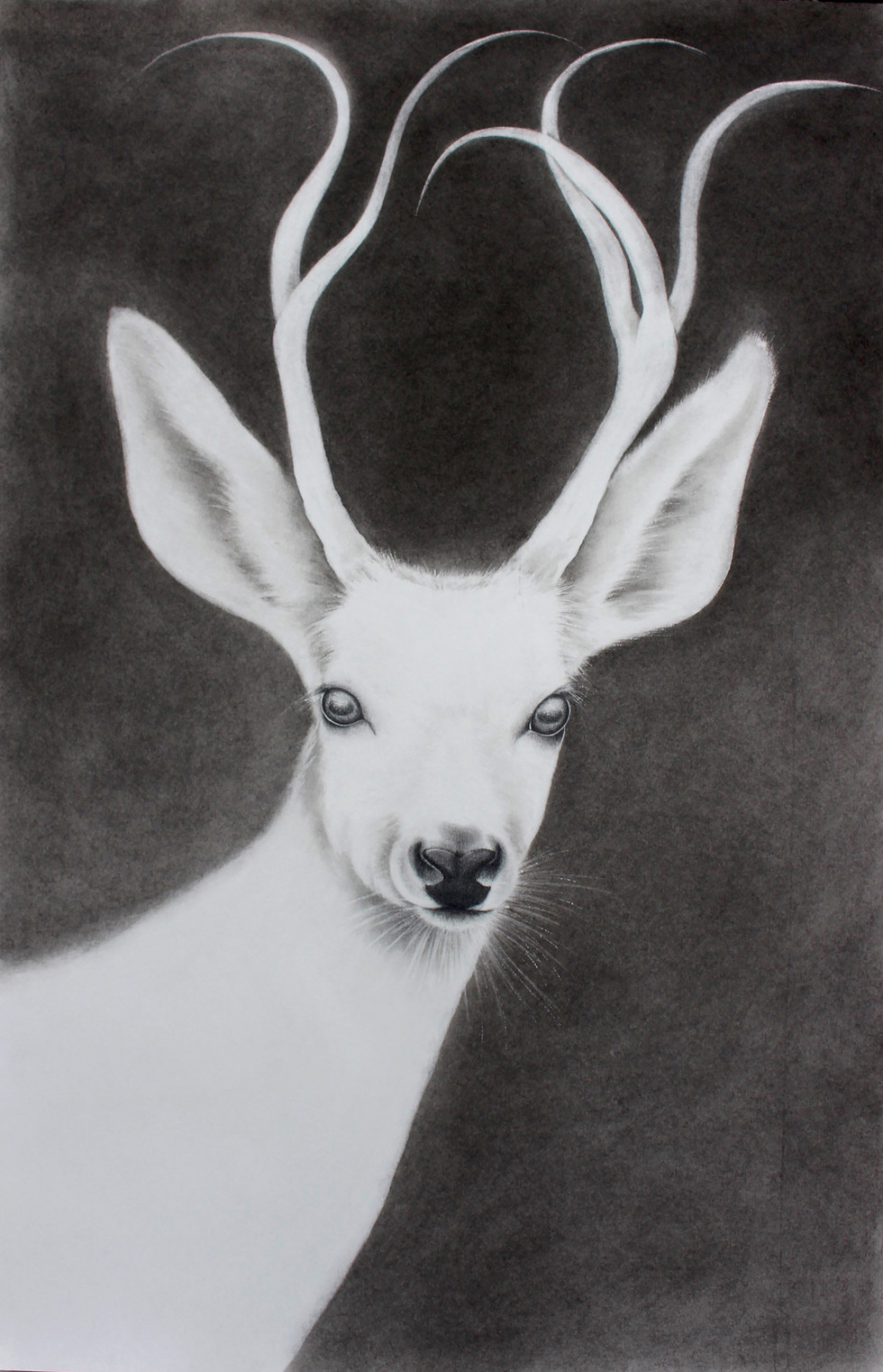 White Stag #1