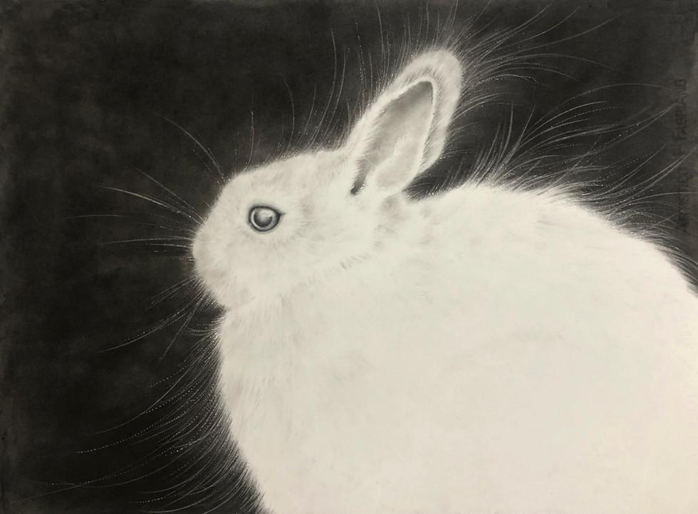 Jade Rabbit #2