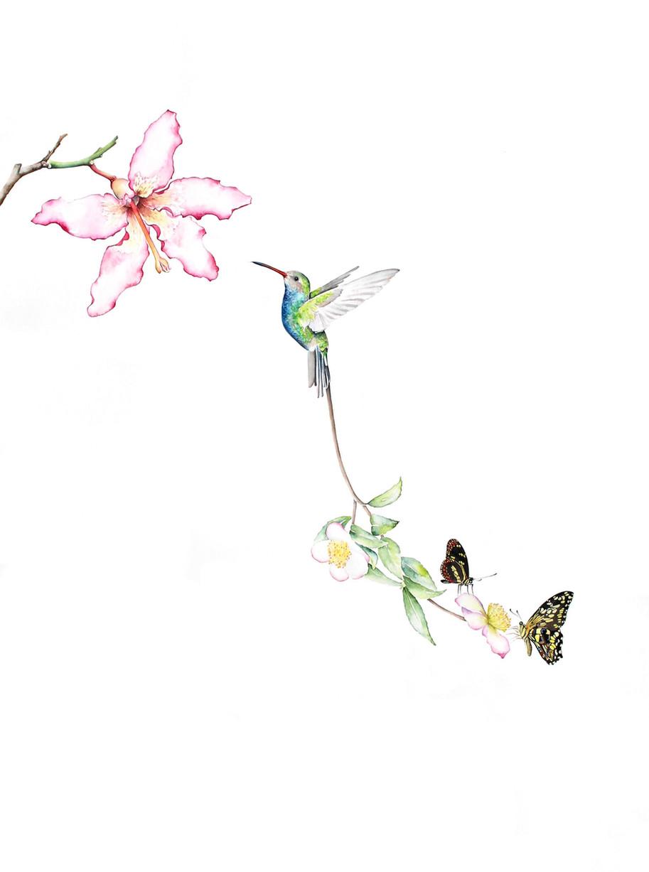 Bird of Paradise #18