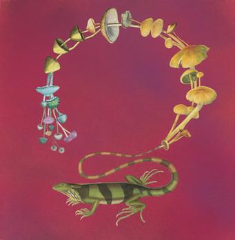 Lizard-shrooms