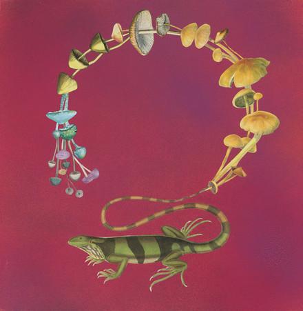 Lizard Tale