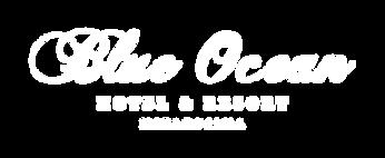 w_logo_bo.png