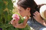 Anosmia or hyposmia is a hallmark symptom of nasal polyps.