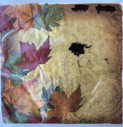 Fall Leaves Paper Napkins - 25 Pack