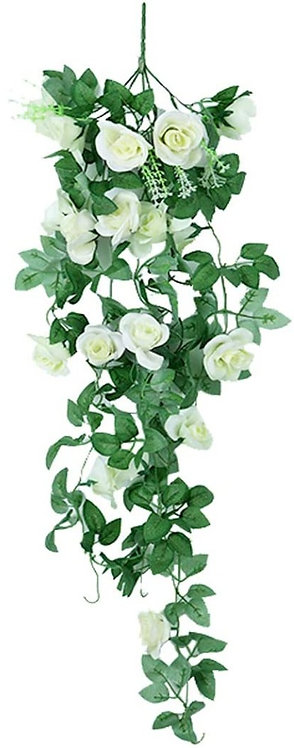 White Rose Ivy