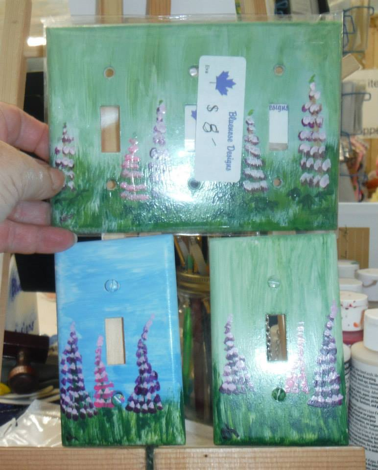 painted switch plates.
