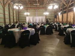 Black, Green, & Purple Reception
