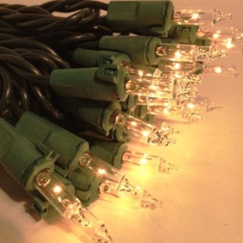 20ft Warm White / Green String