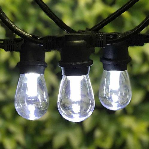 Cool White Edison Lights