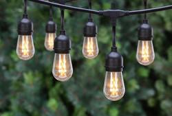 Edison Lights - Drop Light