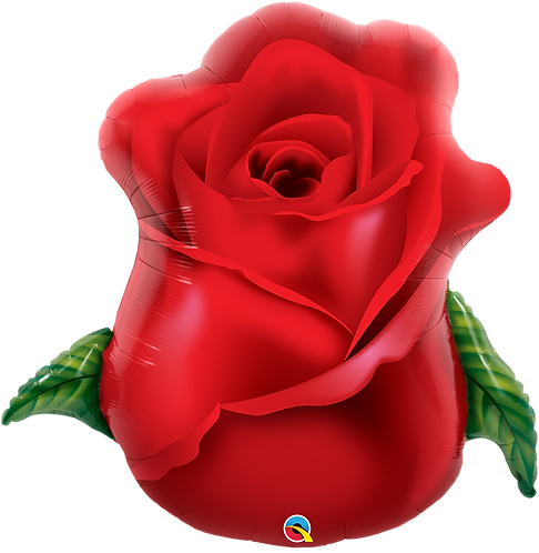 Red Rose ~ 33 Inch