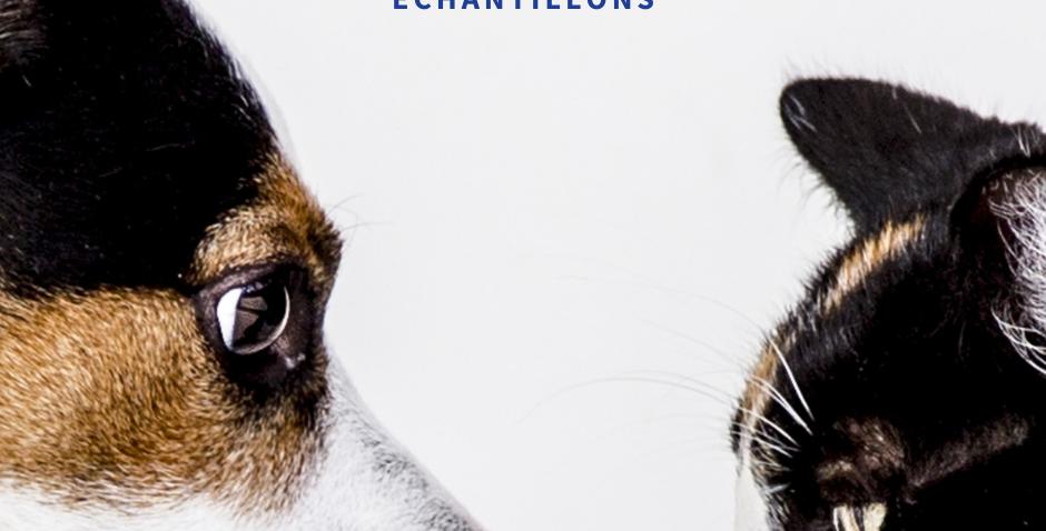 NourriCru - Bon départ pour chien et chat ÉCHANTILLONS CRUS