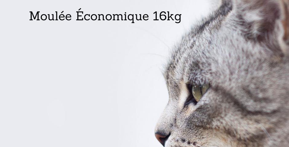 Tip Top - Moulée économique Pour Chat 16Kg