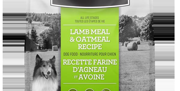 Lifetime - Chien agneau et avoine 11,4Kg