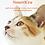 Thumbnail: NourriCru - Boîte surprise hypoallergénique pour chat et chaton